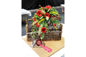 Katies Award Winning Arrangement