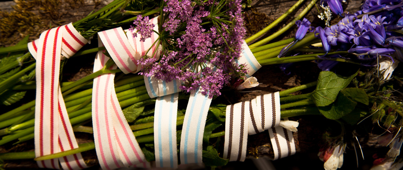 Striped Ribbons