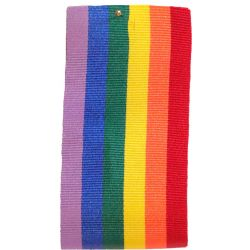 35mm x 20m Rainbow Ribbon /  Pride Ribbon