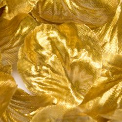Box Of 164 Metallic Gold Fabric Rose Petals