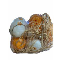 orange and white eggs